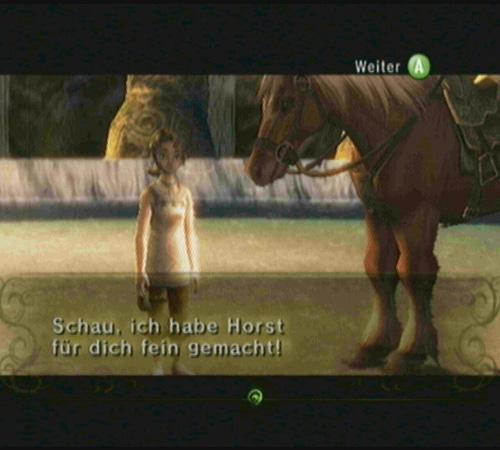 Screenshot - Zelda: Twilight Princess